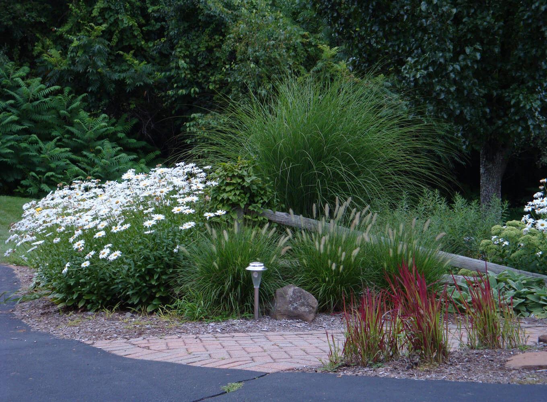 Contact Blue Heron Landscape Design